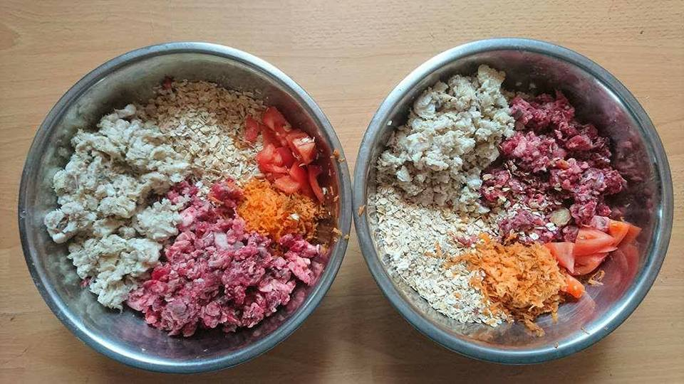 Picture of raw dog food tripe oatmeal and carrots for Dobermans