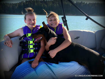 Picture of pretty girls in a boat with doberman